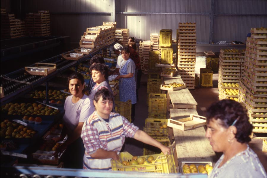 Our workers in the '90