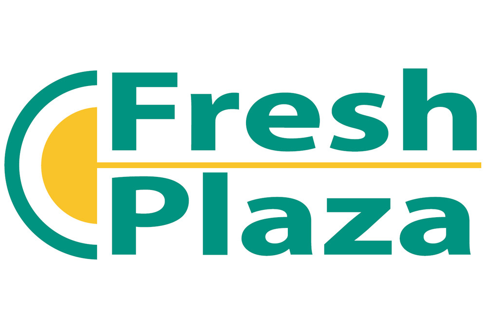 I kaki Divano recensiti da Fresh Plaza