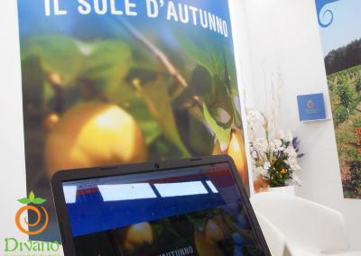 vendita-cachi-Italiaw-sito-web-Divano-al-Macfrut