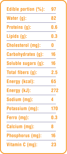 persimmon nutritional details