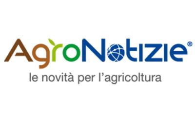 Campagna kaki 2015: Divano S.r.l. su Agronotizie